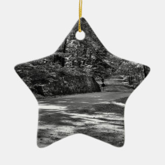Parkway Perfection Ceramic Ornament