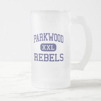 Parkwood - Rebels - High - Monroe North Carolina Frosted Glass Beer Mug