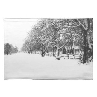 Parley Street In The Bleak Midwinter Placemat