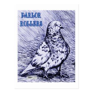 Parlor Roller Pigeon Postcard