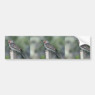 Parpadeo septentrional etiqueta de parachoque
