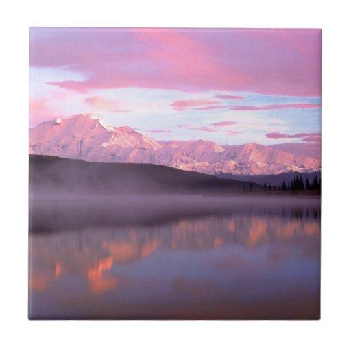 Parque Alaska de Denali Denali de la maravilla del Azulejo Cerámica