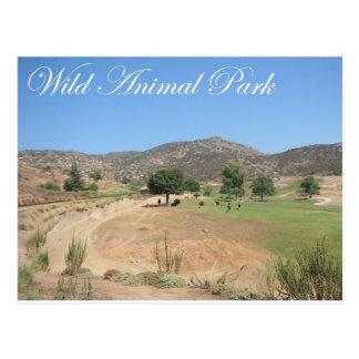Parque animal salvaje tarjetas postales