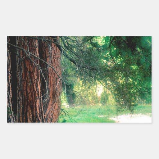 Parque brumoso de las reflexiones de Yosemite Rectangular Pegatina