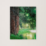 Parque brumoso de las reflexiones de Yosemite Puzzle Con Fotos