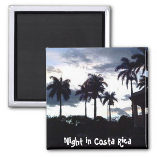 Parque Central at Night Refrigerator Magnets