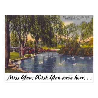 Parque de Avondale, Birmingham, AL Tarjetas Postales