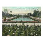 Parque de Chicago del vintage Postales