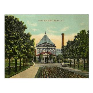 Parque de Chicago del vintage Tarjetas Postales