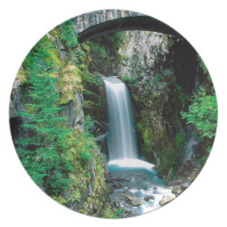 Parque de Christine el Monte Rainier de la cascada Plato De Cena