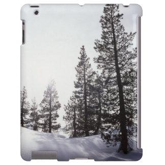 Parque de estado de California, Rancho Cuyamaca Funda Para iPad