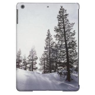 Parque de estado de California, Rancho Cuyamaca Funda Para iPad Air