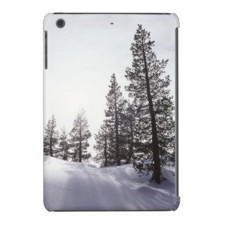 Parque de estado de California, Rancho Cuyamaca Fundas De iPad Mini Retina