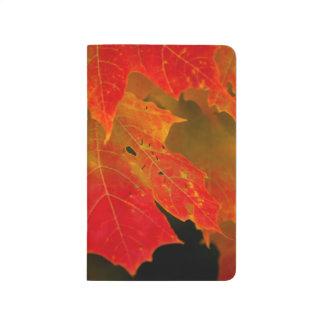 Parque de estado de Itasca, colores 2 de la caída Cuaderno