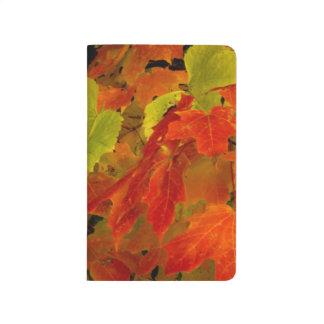 Parque de estado de Itasca, colores de la caída Cuadernos Grapados