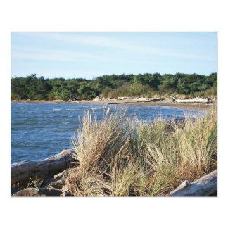 Parque de estado de la bahía de Nehalem Fotografias
