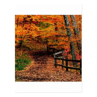 Parque de estado de la cala de Mccormick del otoño Postales
