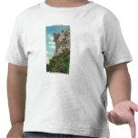Parque de estado de la muesca de Franconia Camiseta