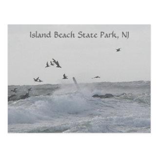 Parque de estado de la playa de la tarjetas postales