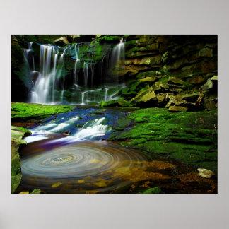 Parque de estado de las caídas del Blackwater de Póster