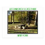 Parque de estado de Letchworth - roca de la tabla Postal