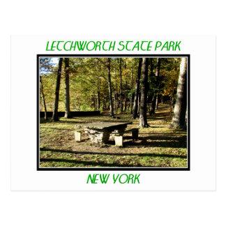 Parque de estado de Letchworth - roca de la tabla Tarjeta Postal