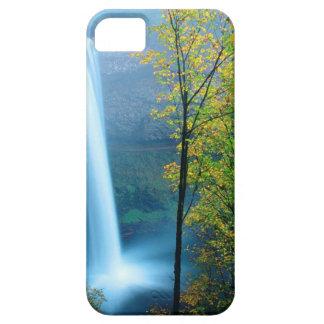 Parque de estado de plata del sur de la cascada iPhone 5 cárcasa