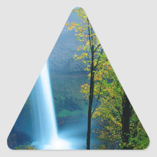 Parque de estado de plata del sur de la cascada pegatina triangular