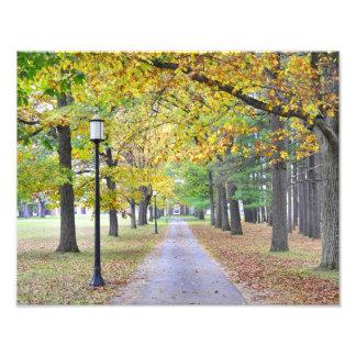 Parque de estado del balneario de Saratoga Fotografía