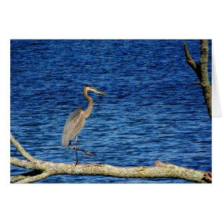 Parque de estado del lago Kiser el condado de Cham Felicitacion