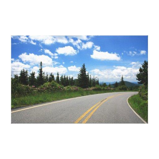 Parque de estado del Mt. Mitchell Impresiones De Lienzo