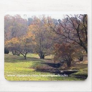 Parque de estado jardín del valle, Wilmington, De. Tapete De Ratón