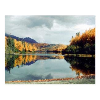 Parque de estado largo del lago tarjetas postales