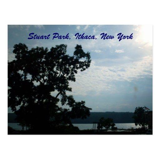 PARQUE de ESTUARDO, postal de ITHACA, NUEVA YORK