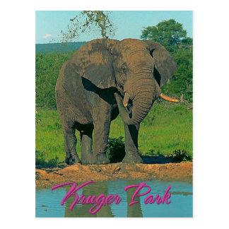 Parque de Kruger, Suráfrica Postales