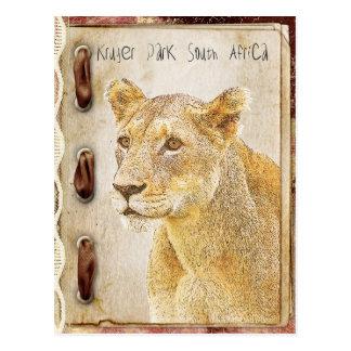 Parque de Kruger, Suráfrica Tarjetas Postales