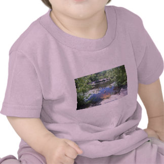 Parque de la arboleda del abedul - tome un Gander Camiseta