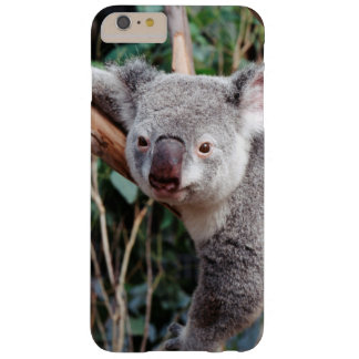 Parque de la fauna de Featherdale, osos de koala Funda De iPhone 6 Plus Barely There