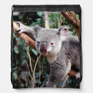 Parque de la fauna de Featherdale, osos de koala Mochila