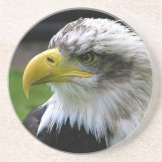 Parque de la fauna y del dinosaurio de Eagle calvo Posavasos Diseño