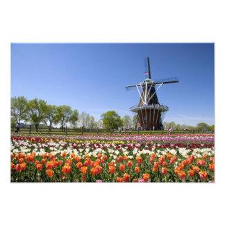 Parque de la isla del molino de viento con los tul fotografía
