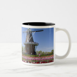 Parque de la isla del molino de viento con los tul tazas de café