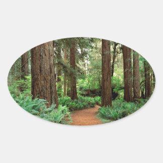 Parque de las secoyas de la pradera del bosque calcomanía óval personalizadas