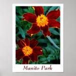 Parque de Manito Poster