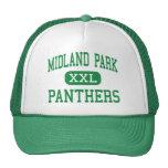 Parque de Midland - panteras - alto - parque de Mi Gorras