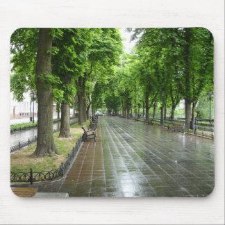 Parque de Odessa (3) Tapetes De Ratón