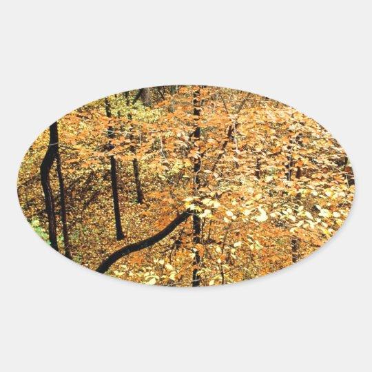 Parque de Percy Warner del bosque del otoño Pegatina Ovalada