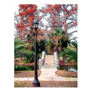 Parque de piedra New Orleans de la ciudad del puen Tarjetas Postales