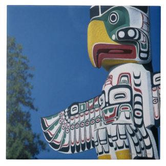Parque de Stanley, Vancouver, Columbia Británica, Tejas