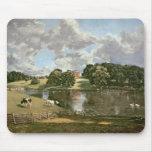 Parque de Wivenhoe, Essex, 1816 Tapetes De Raton